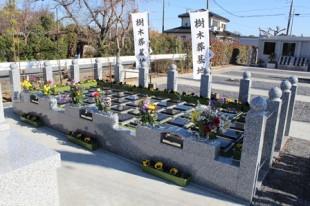 樹木葬墓地1B
